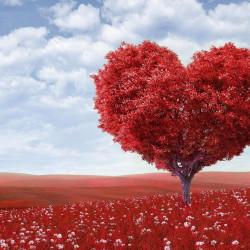 Ljubavna numerologija: Kakvi ste kada volite